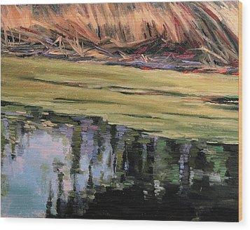 Pond Scum-heather Farms Walnut Creek Wood Print