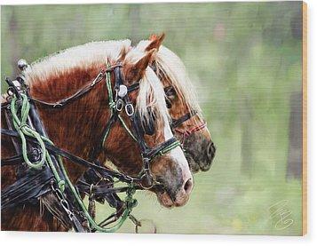 Ponies In Harness Wood Print