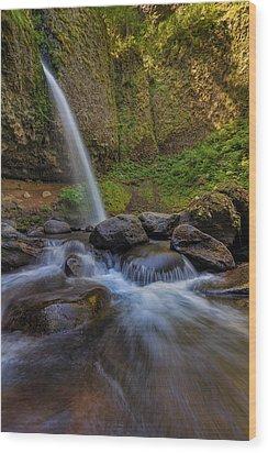 Ponytail Falls Wood Print by David Gn