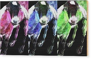 Pop Art Goats Trio - Sharon Cummings Wood Print by Sharon Cummings