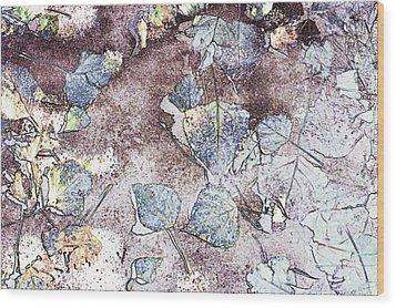 Poplar Leaf Path Wood Print by Aliceann Carlton