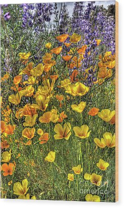 Wood Print featuring the photograph Poppies And Lupines by Jim and Emily Bush
