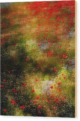Poppies For Remembrance Wood Print