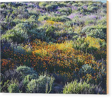 Wood Print featuring the photograph Poppies On A Hillside by Glenn McCarthy Art and Photography