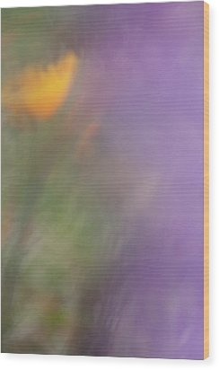 Wood Print featuring the photograph Poppy And Purple Lupine by Roger Mullenhour
