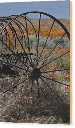Wood Print featuring the photograph Poppy Farm by Ivete Basso Photography