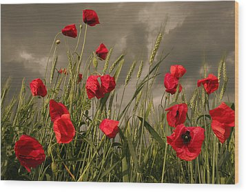Poppy Field Before The Storm Wood Print by Floriana Barbu