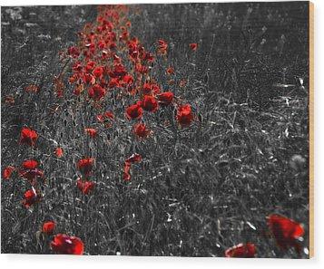 Poppy Field Wood Print by Svetlana Sewell