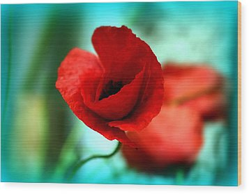 Wood Print featuring the photograph Poppy Flower by Emanuel Tanjala