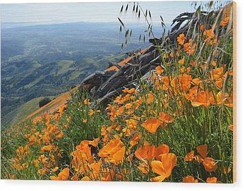 Poppy Mountain  Wood Print