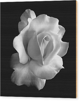 Porcelain Rose Flower Black And White Wood Print by Jennie Marie Schell
