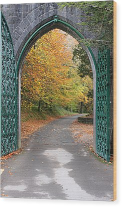 Portal To The Colorful Autumn Season Wood Print by Pierre Leclerc Photography