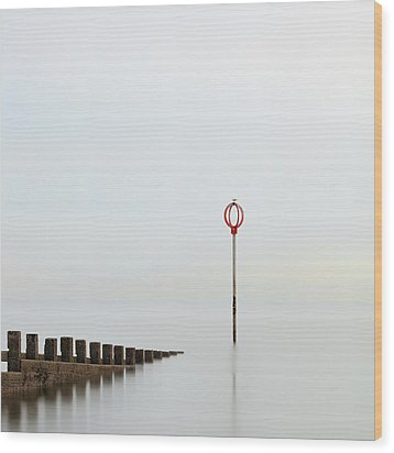 Wood Print featuring the photograph Portobello by Grant Glendinning