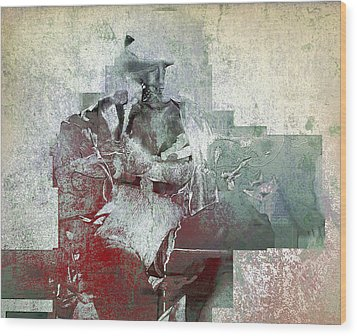 Wood Print featuring the photograph Portrait Abstract Variation #04 by Richard Wiggins