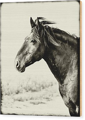 Portrait Wood Print by Mary Hone