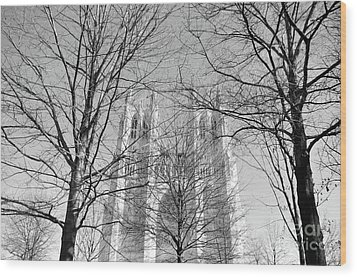 Portrait Of A Cathedral Wood Print