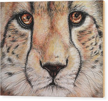 Portrait Of A Cheetah Wood Print by Heidi Kriel