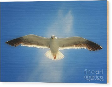 Portrait Of A Seagull Wood Print by John A Rodriguez