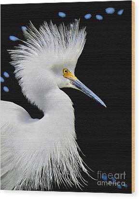 Portrait Of A Snowy White Egret Wood Print by Jennie Breeze