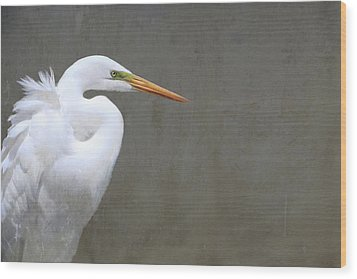 Portrait Of An Egret Rectangle Wood Print by Karen Lynch