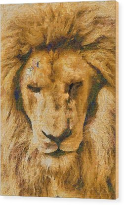 Wood Print featuring the photograph Portrait Of Lion by Scott Carruthers