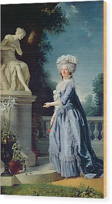 Portrait Of Marie-louise Victoire De France Wood Print by Adelaide Labille-Guiard