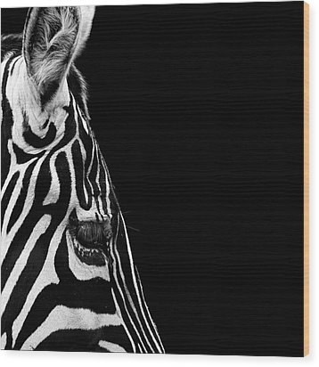 Portrait Of Zebra In Black And White Iv Wood Print