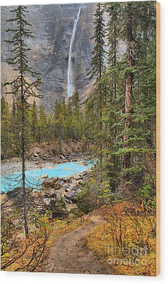 Wood Print featuring the photograph Portrait Of Takakkaw Falls by Adam Jewell