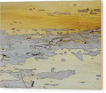 Possum Abstract Landscape 3 Wood Print