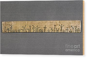 Potawatomi Medicine Stick Wood Print by Granger