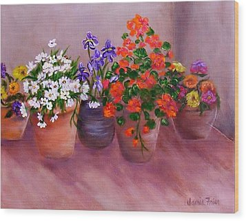 Pots Of Flowers Wood Print by Jamie Frier