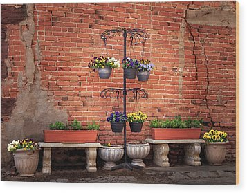 Wood Print featuring the photograph Potted Plants And A Brick Wall by James Eddy