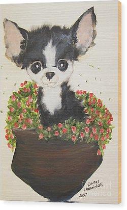 Potted Pup Wood Print by Rachel Carmichael