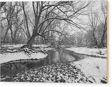 Poudre Black And White Wood Print by James Steele