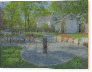Povoas Park Wood Print