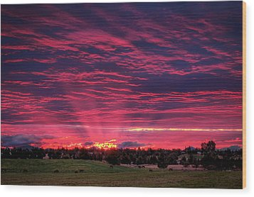 Powell Butte Oregon Sunset Wood Print