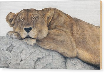 Power And Grace At Rest Wood Print by Pat Erickson