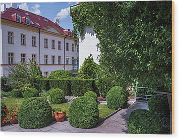 Wood Print featuring the photograph Prague Courtyards. Regular Style Garden by Jenny Rainbow
