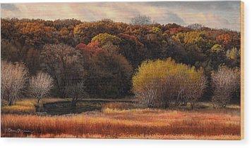 Prairie Autumn Stream Wood Print by Bruce Morrison