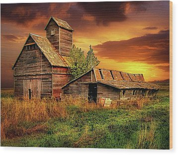Prairie Barns Wood Print