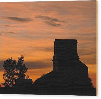 Prairie Dusk Wood Print by Tony Beck