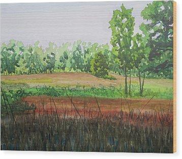 Prairie Grass Field Wood Print by Bethany Lee