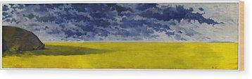 Prairie Grouper Panorama Wood Print by Martin Tielli