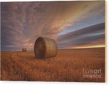 Prairie Harvest Wood Print by Dan Jurak