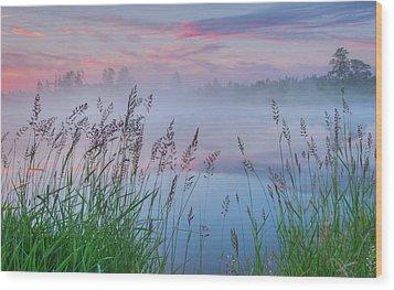 Wood Print featuring the photograph Prairie Pond Before Sunrise by Dan Jurak