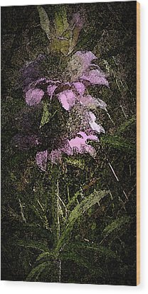 Prairie Weed Flower Wood Print