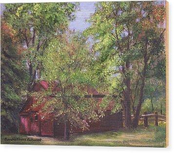 Prallsville Mills Stockton Nj Wood Print by Aurelia Nieves-Callwood