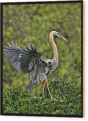 Wood Print featuring the photograph Prancing Heron by Shari Jardina