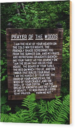 Prayer Of The Woods Wood Print by Michelle Calkins