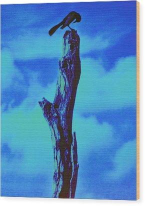 Praying Black Bird Grace In Nature Wood Print by David Mckinney